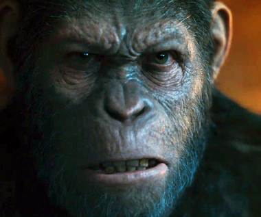 """Wojna o Planetę Małp"" [trailer]"