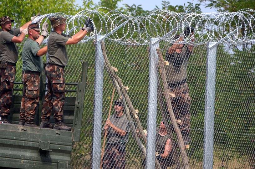 Wojsko kończy budowę pierwszego fragmentu ogrodzenia na granicy serbsko-węgierskiej, w pobliżu wioski Morahalom. /CSABA SEGESVARI /AFP