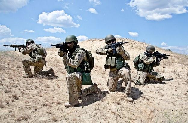 Wojsko potrzebuje szeregowców /123RF/PICSEL