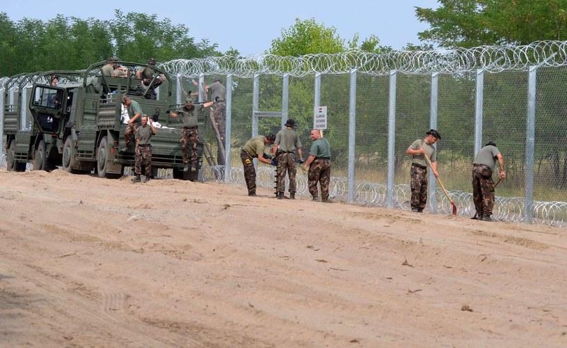 Wojsko węgierskie buduje ogrodzenie na granicy węgiersko-serbskiej /CSABA SEGESVARI /AFP