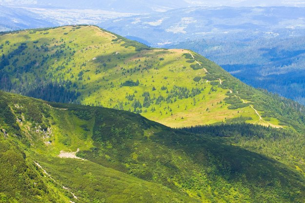 Wokół Babiej Góry panuje specyficzny mikroklimat /123/RF PICSEL