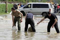 Wrocław: Woda zalała osiedle Kozanów
