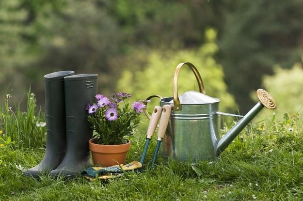 Wrzesień to pracowity miesiąc w ogrodzie /123/RF PICSEL