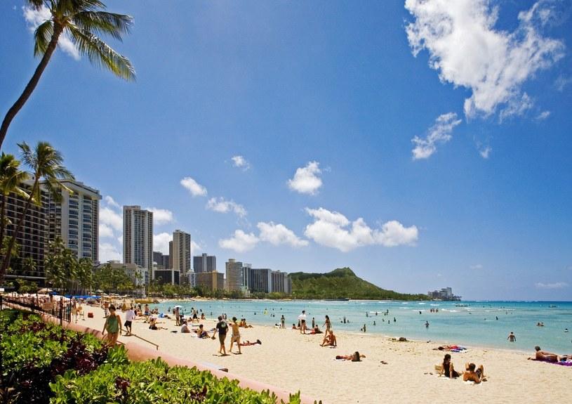 Wspaniałe plaże i niezawodna pogoda /123RF/PICSEL