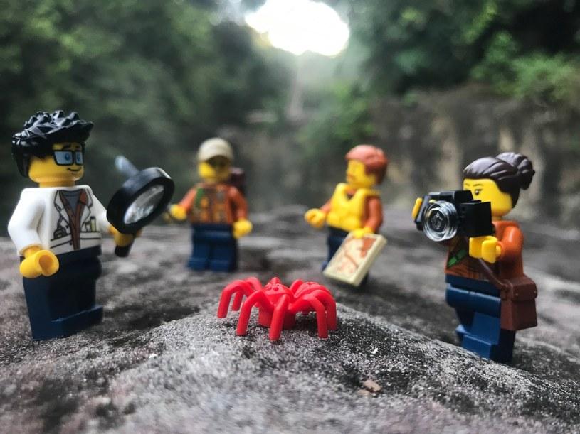 Wspólna akcja LEGO i National Geographic Kids /materiały prasowe