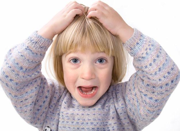 Wszawica jest najczęstszą chorobą u dzieci /123RF/PICSEL