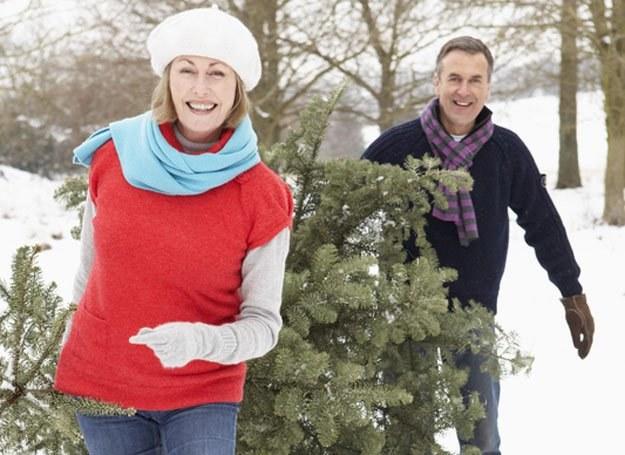Wszyscy kochamy Boże Narodzenie, choć każdy za co innego /© Panthermedia