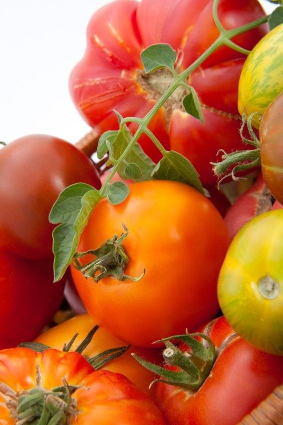 Wybierz swój ulubiony gatunek pomidorów /©123RF/PICSEL