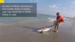 Wyciągnął rekina na brzeg, by uratować mu życie