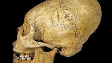 Wydłużone czaszki oznaką statusu społecznego