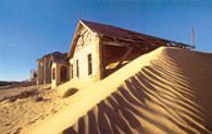 Wydma na pustyni Kalahari, Namibia /Encyklopedia Internautica