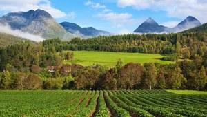 Wyjedź do Norwegii zwiedzać i pracować!