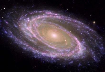 Wynalazek australijskich naukowców może zapoczątkować rewolucję w obserwacjach kosmosu /AFP