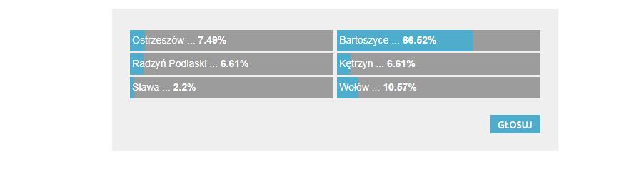 Wyniki sondy /Zrzut ekranu /