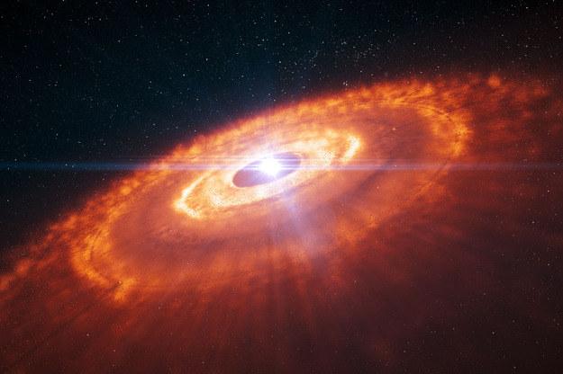 Wyobrażenie dysku wokół gwiazdy HL Tauri. Źródło: ESO/L. Calçada /materiały prasowe