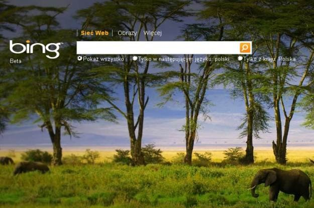 Wyszukiwarka Bing radzi sobie coraz lepiej /Internet