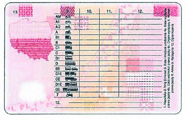 Wzór nowego prawa jazdy /