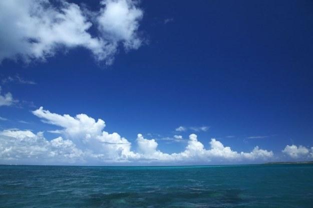 Wzrost zakwaszenia i temperatury będzie miał skutki globalne /©123RF/PICSEL