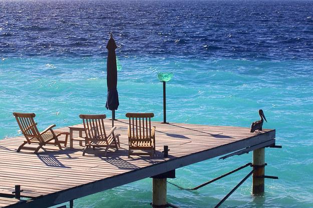 Z badań Ipsos wynika, że aż 62 proc. z nas nie może pozwolić sobie na żadne wakacyjne podróże /© Panthermedia