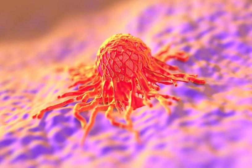 Z niektórymi nowotworami niezwykle trudno walczyć, zwłaszcza gdy przerzutują /©123RF/PICSEL