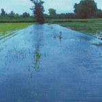 Z powodu ulew zostali bez środków do życia. Proszą o pomoc władze Szczecina