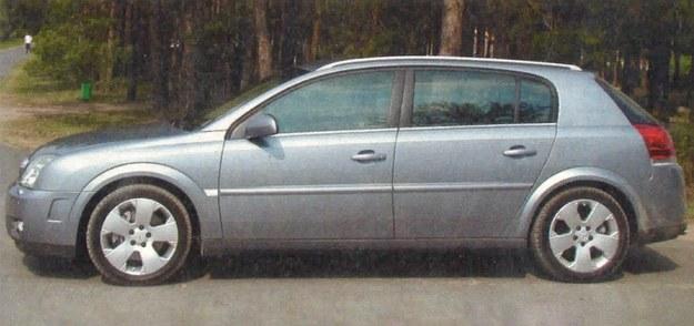 Z profilu Signum przypomina przerośniętego, kompaktowego hatchbacka. /Motor