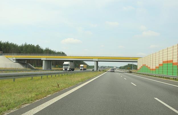 Za przejazd A1 zapłacimy jak za zboże / Fot: Stanisław Kowalczuk /East News