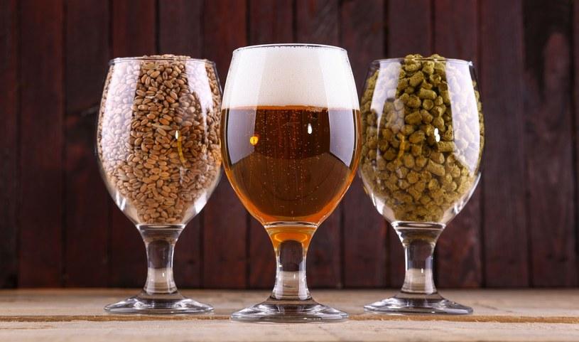 Zabawa słodami daje piwowarom ogromne pole do popisu... /©123RF/PICSEL