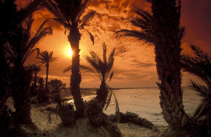 Zachód słońca na Dżerbie /123RF/PICSEL