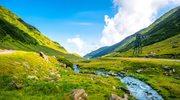 Zachwycająca przyroda Rumunii