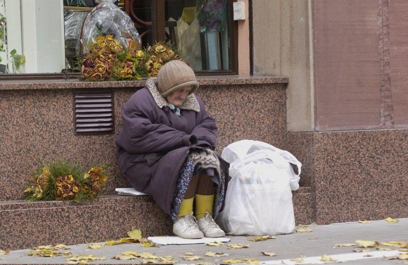 Zadaniem programów pomocowych powinno być przede wszystkim wyrównywanie szans społecznych /Laski  /East News