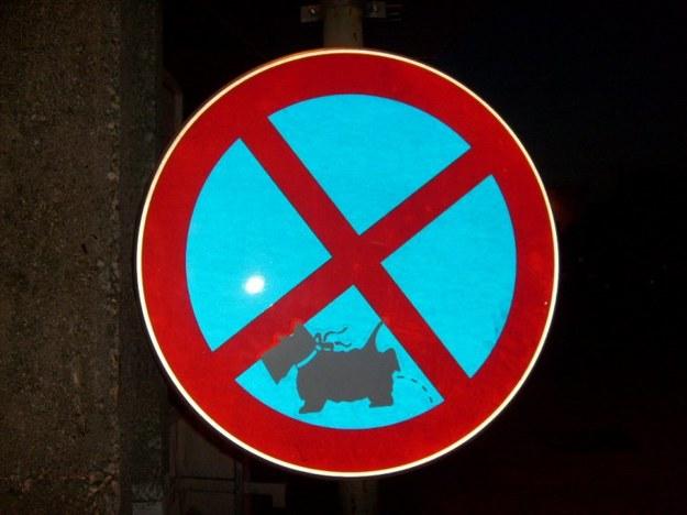 Zakaz zatrzymywania się piesków