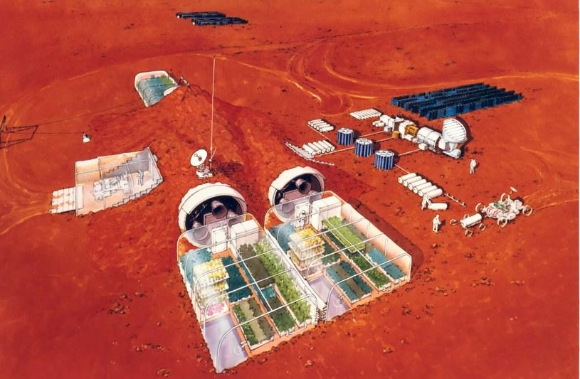 Załogowa misja na Marsa zagrożona? /NASA