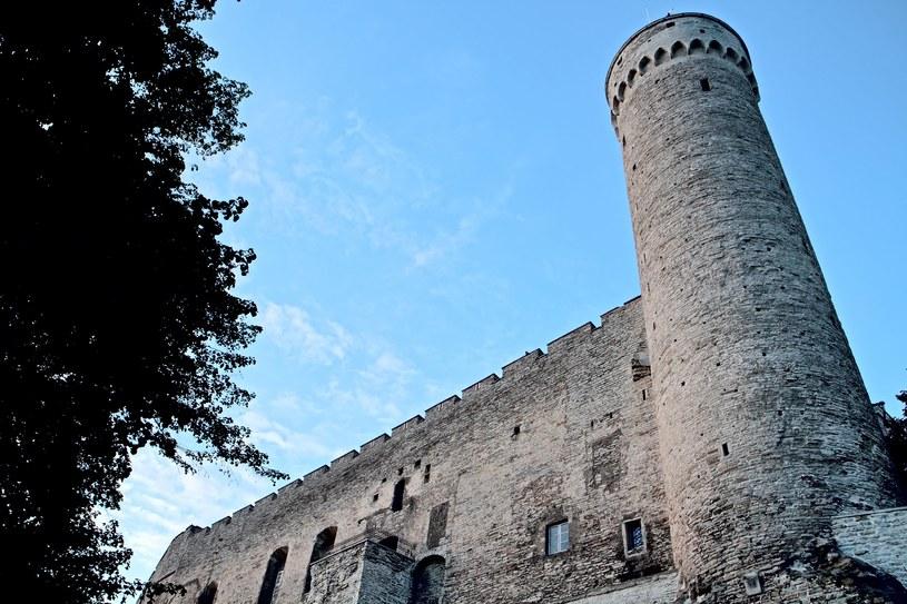 Zamek Toompea w Tallinie /123/RF PICSEL