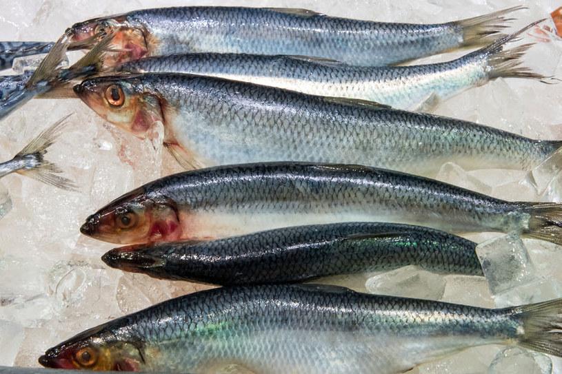 Zanieczyszczenie śledzia w Bałtyku jest pięć razy większe niż zanieczyszczenia ryb w Oceanie Atlantyckim /©123RF/PICSEL