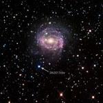 Zaobserwowano supernową kilka godzin po wybuchu
