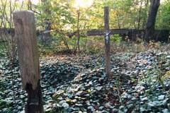 Zapomniany cmentarz w lesie