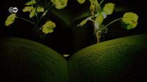 Żarówki do lamusa. Teraz zaświecisz roślinę!