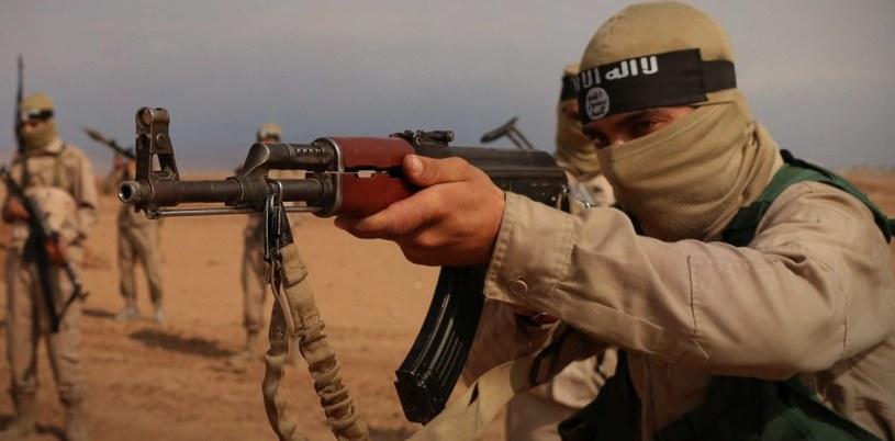 Zasiłki dla bezrobotnych pobierało ok. 200 dżihadystów (zdj. ilustracyjne) /Balkis Press   /PAP/Abaca