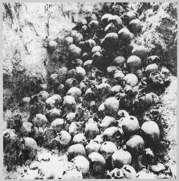 Szczątki mieszkańców Woli Ostrowskiej na Wołyniu zamordowanych 30.08.1943. Wynik ekshumacji z 1992 roku
