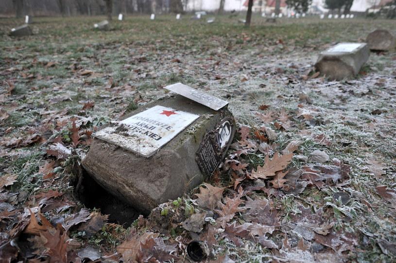 Zdewastowane nagrobki żolnierzy Armii Radzieckiej na cmentarzu wojennym w Garwolinie /Przemysław Piątkowski /PAP