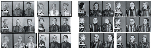 """Zdjęcia policyjne więźniów KL Auschwitz - zamiieszczone w książce """"Fotograf z Auschwitz"""" /materiały prasowe"""