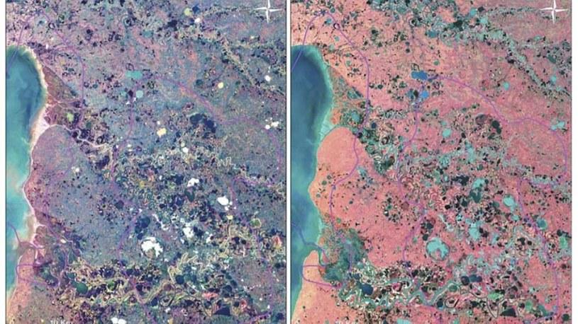 Zdjęcia Syberii wykonane przez satelitę Landsat-8 w barwach widzialnych i podczerwieni /Fot. Vasily Bogoyavlensky /materiały prasowe