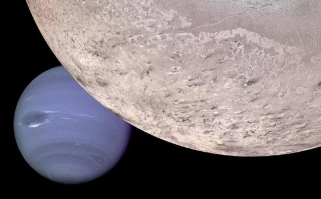 Zdjęcie Neptuna (lewy dolny róg) i jego księżyca wygenerowane komputerowo na bazie materiałów przesłanych przez sondę Voyager 2 /AFP