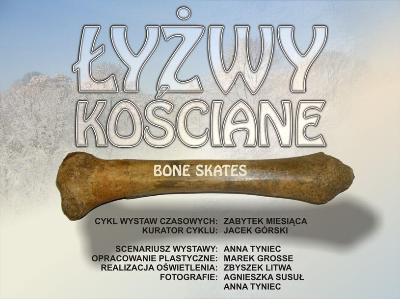 Zdjęcie pochodzi z Muzeum Archeologicznego w Krakowie /