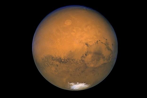 ZEA zapowiadają bezzałogową misję do Marsa /AFP
