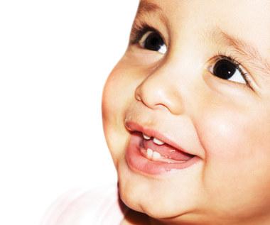 Zęby mleczne: Kalendarz ząbkowania