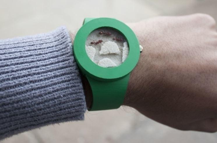 """""""Zegarek"""" z żywymi mrówkami w środku, źródło: www.coolthings.com /INTERIA.PL"""