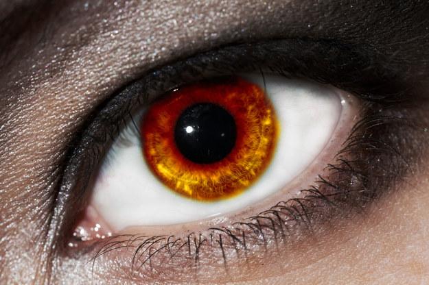 Zespół suchego oka często objawia się łzawieniem /123/RF PICSEL