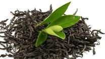 Zielona herbata może czasem zaszkodzić